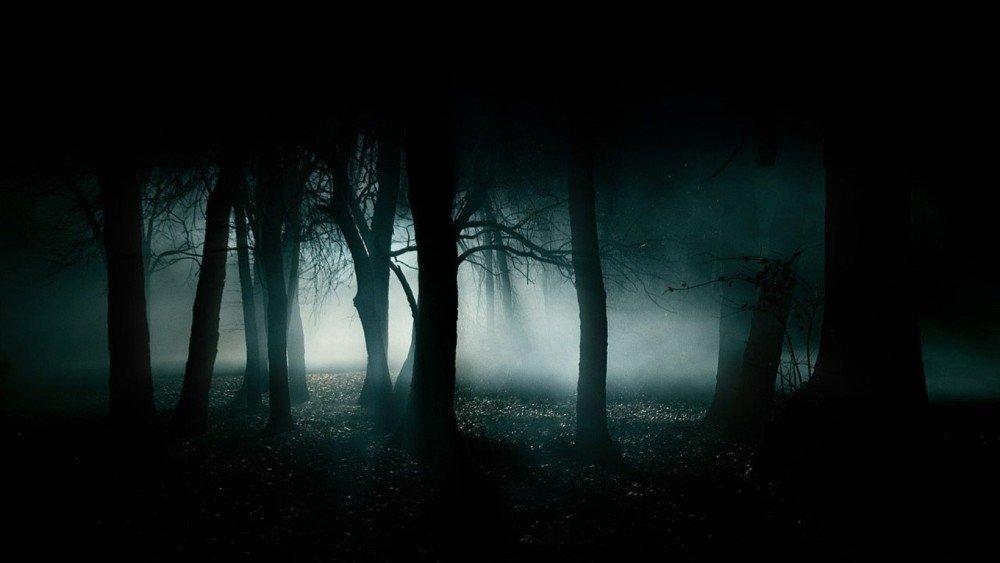 the fog, nebel, horror, john carpenter