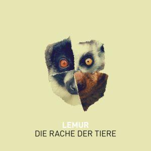 lemur-tiere