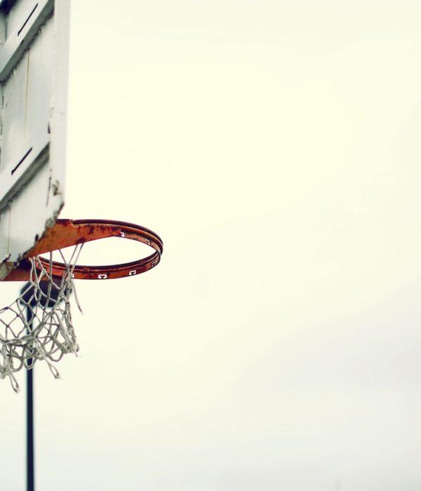 StartupCrunchtime, Basketball, Alba Berlin, Startup