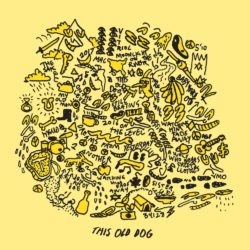 Mac DeMarco, This Old Dog, review, rezension, Kritik, Platte, 030 magazin, berlin