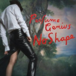 Perfume Genius, No Shape, Album, Review, Rezension, Kritik, Musik, Experimental, Rock, 030 Magazin, Berlin