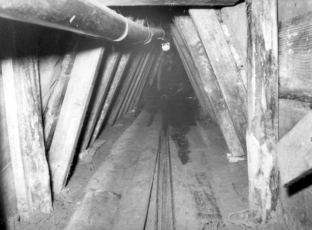 tunnel, mauerpark