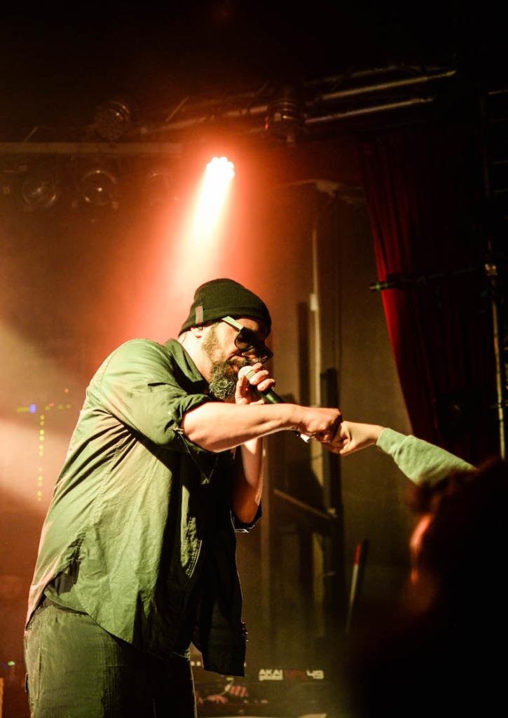 Samy deluxe, Hip-Hop, Rap
