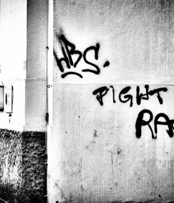 Fight Racism, Fler, Hip-Hop