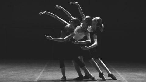 Performing Arts Festival, Theater, Kunst, Performance, Tanz, Puppentheater, Ausstellung