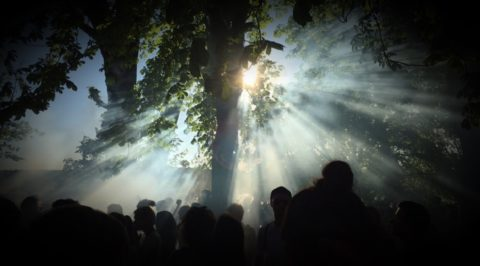 O mato, Open Air, Musik, Rave, Charity