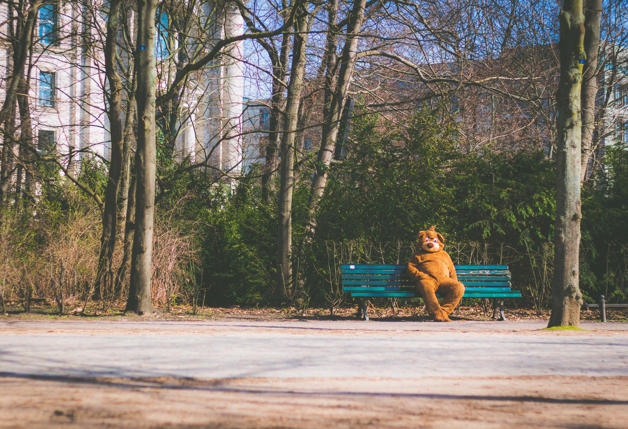 Park, spazieren