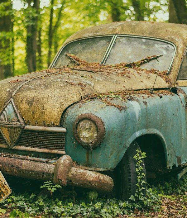 Auto, Kfz-Gutachter, Reparatur, Gutachten